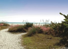 Siesta_Key___Beach_Pathway_Sarasota County