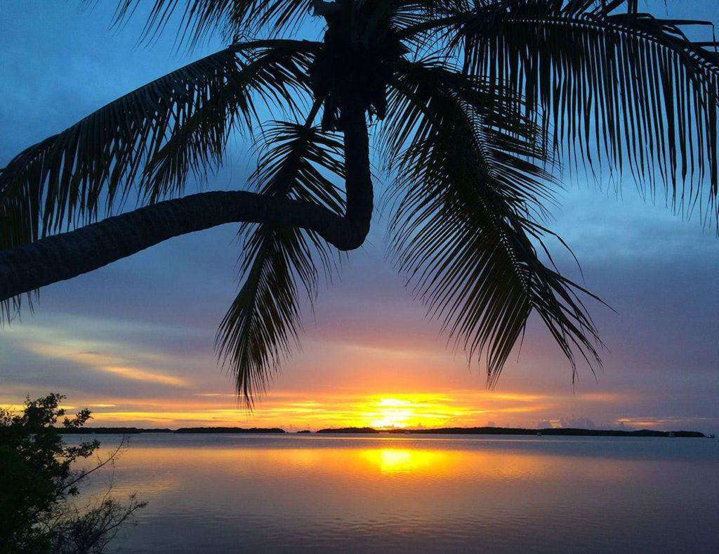 Visit Florida - Bildarchiv