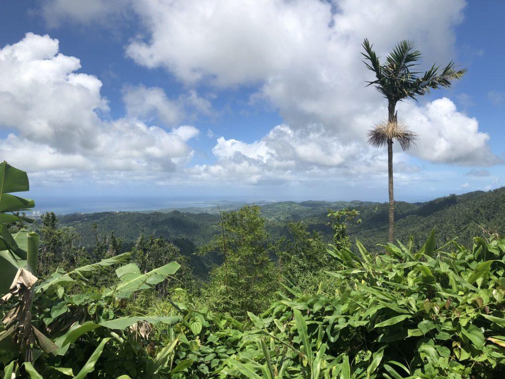 Discover Puerto Rico - Bildarchiv